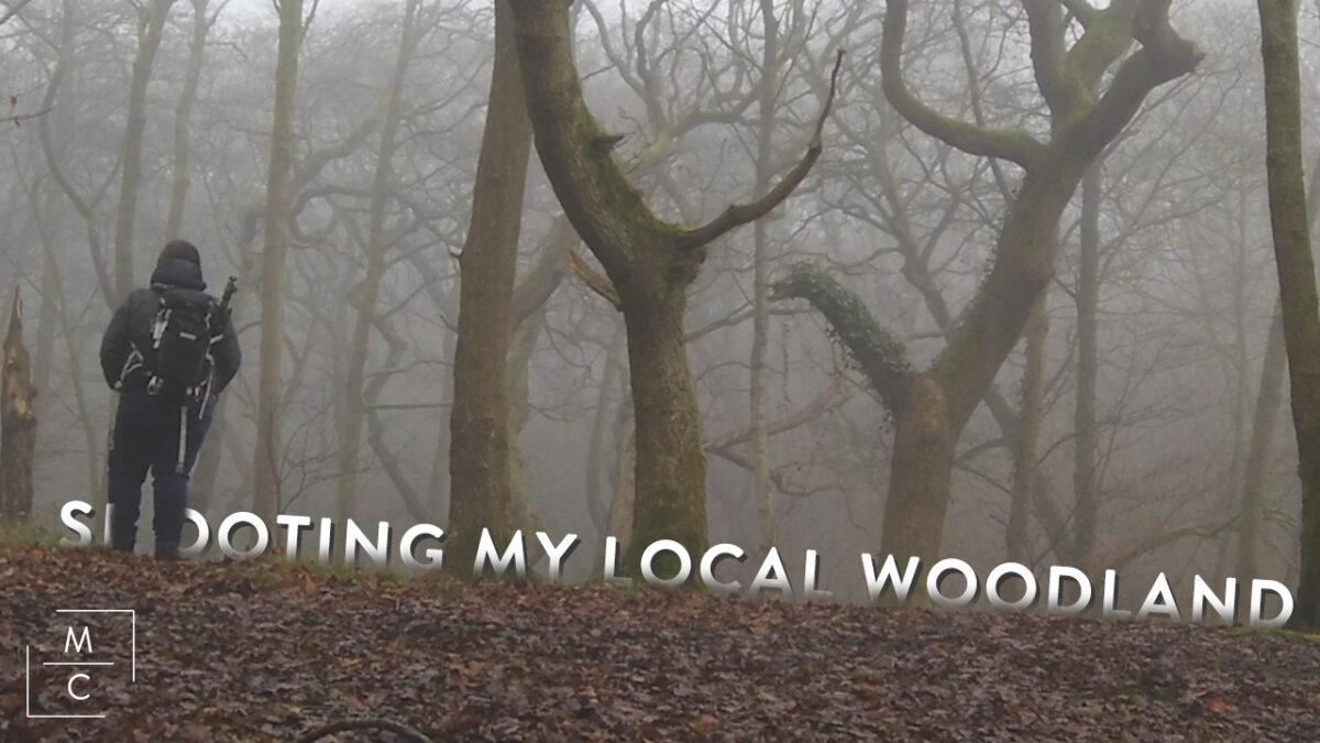 Shooting my local woodland Youtube Thumbnail